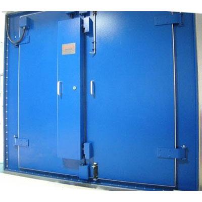 דלת למיגון EMP